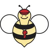 bee - coach